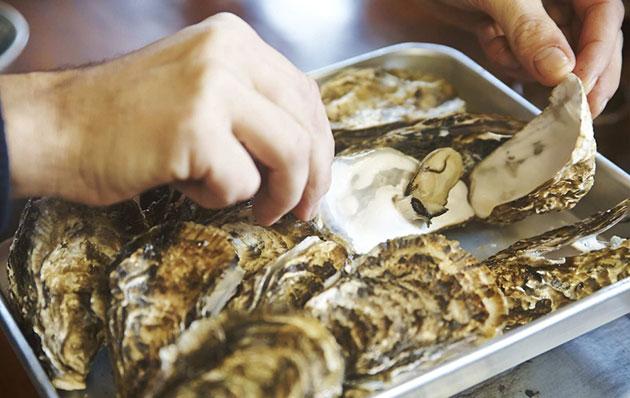 真野湾や加茂湖で育てられている牡蠣